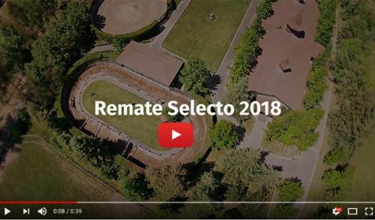 Promocional Remate Selecto 2018